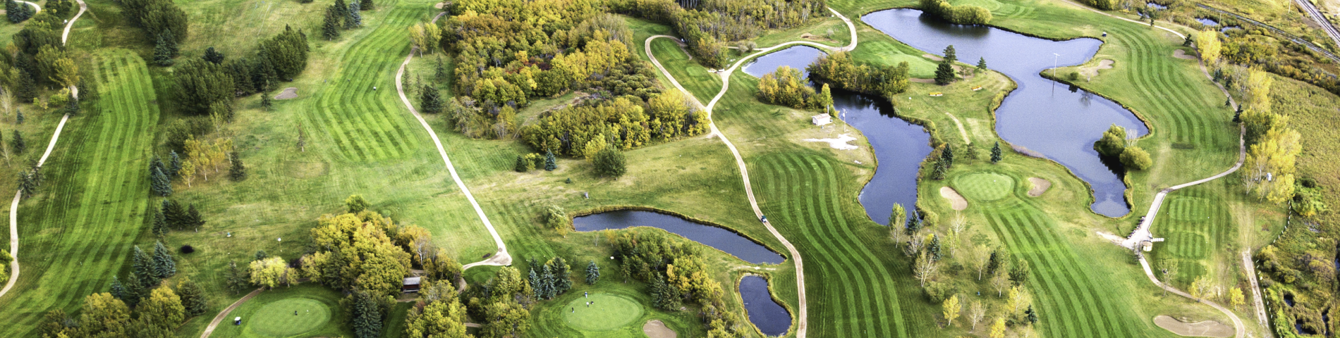 an area photo of a golf course
